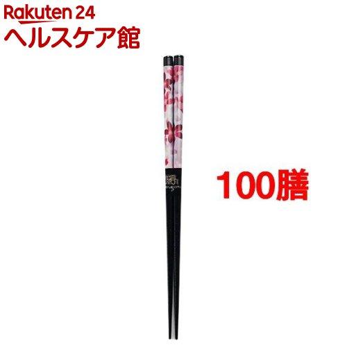 花雅 桜 23cm(100膳セット)