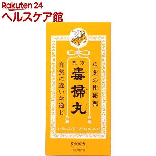 【第2類医薬品】複方毒掃丸(5400丸)【毒掃丸(ドクソウガン)】