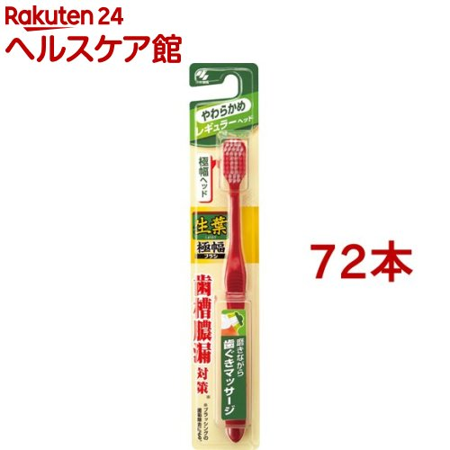生葉 極幅ブラシ レギュラー やわらかめ(72本セット)【生葉】