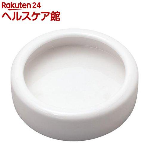 レプタイルディッシュ S(1コ入)