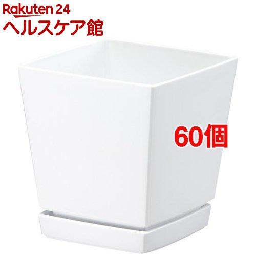 クエンチローポット 5号 ホワイト(60個セット)【クエンチ】