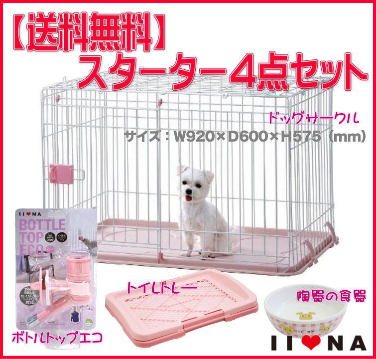 IINA 限定品 トレンド イーナ ピンク スターター4点セット