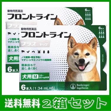 [動物用医薬品 犬用] フロントラインプラス ドッグ M [10~20kg未満] 6本入(1.34mL×6)2箱セット★