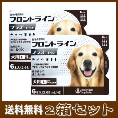 [動物用医薬品 犬用] フロントラインプラス ドッグ L [20~40kg未満] 6本入 (2.68mL×6)2箱セット★