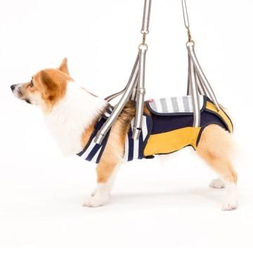 ◇トンボ 歩行補助ハーネスLaLaWalk(ララウォーク) 中型犬・コーギー用 ボーダーマスタード5 CL