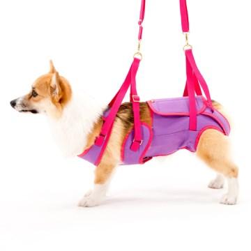 ◇トンボ 歩行補助ハーネスLaLaWalk(ララウォーク) 中型犬・コーギー用 パープル×ピンク CM
