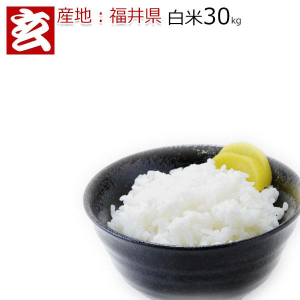 お米 30kg 送料無料 コシヒカリ30年産 福井県 白米 30kg 送料無料