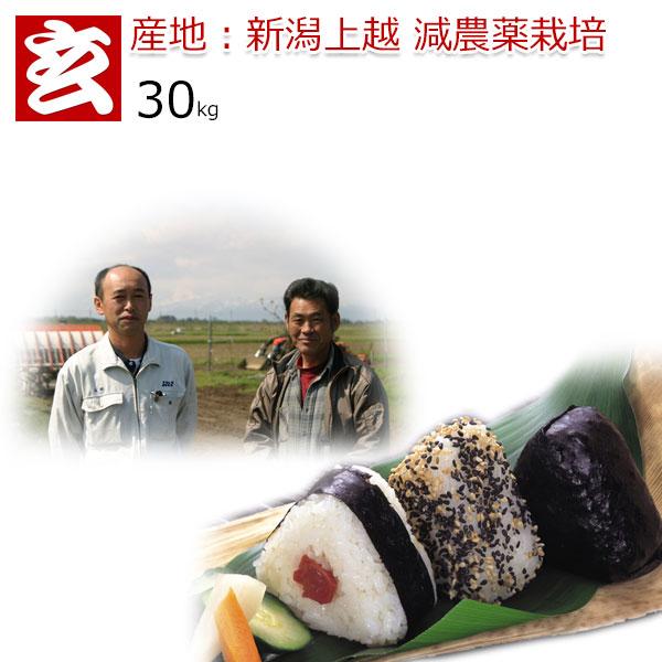 減農薬 玄米 30kg 送料無料 みずほの輝き 減農薬米 30年産 新潟産 特別栽培認証 生産者:辻勉氏