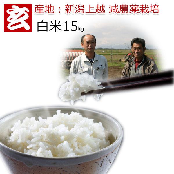 減農薬 白米 15kg 送料無料 特別栽培認証 新潟産 1等米 みずほの輝き 農薬5割減 産年:令和元年 生産者:辻勉氏