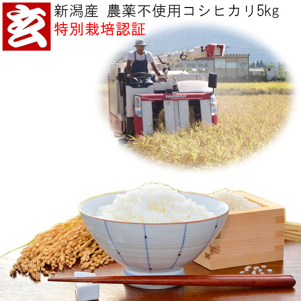 精米方法選べます 玄米 白米 7分搗き 5分搗き 分搗き米 美味しさ満足度4.64 無農薬 5kg クリアランスsale 期間限定 新潟産 生産者:辻勉 無農薬栽培コシヒカリ 1等米 産年:令和3年 送料無料 ハイクオリティ 化学肥料不使用 農薬不使用