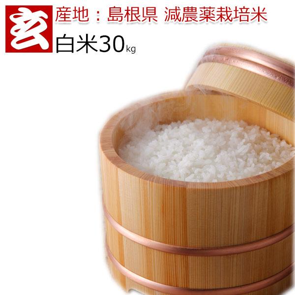 お米 30kg 送料無料 島根県産 つや姫 減農薬 特別栽培認証