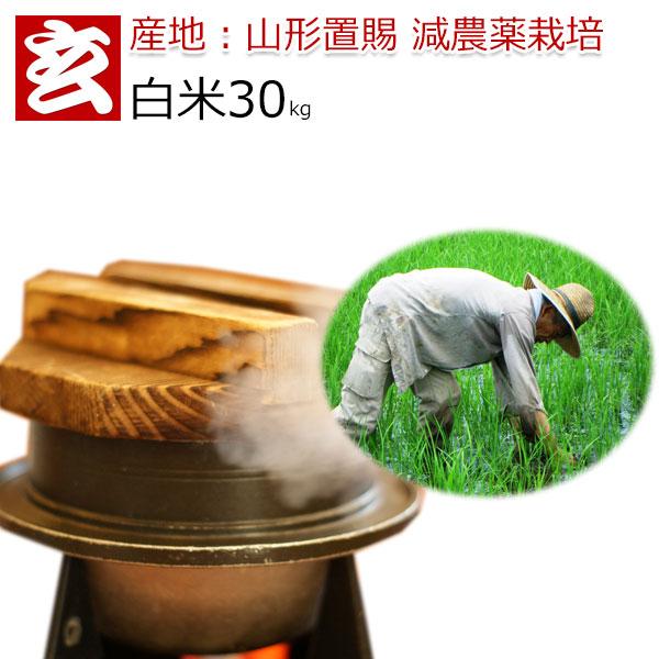 お米 30kg 送料無料 はえぬき 減農薬 30年産 山形県産 特別栽培認証 生産者:小林 亮