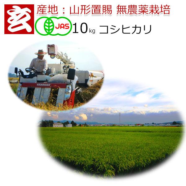 無農薬 玄米 10kg 送料無料 JAS有機認証 1等米 コシヒカリ 農薬不使用 山形県産 置賜地区限定産年:令和元年 生産者:小林 亮