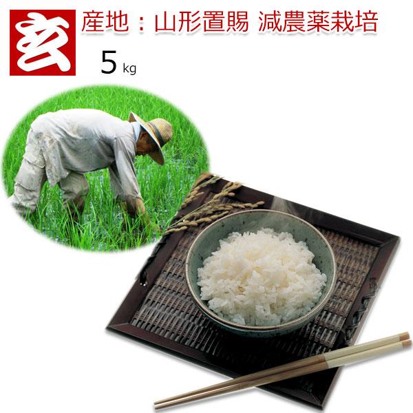 玄米 5kg 送料無料 農薬8割減 つや姫 特別栽培認証 令和1年産 山形県置賜産 特別栽培認証生産者:小林 亮氏