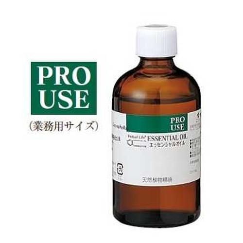 ローズマリー・カンファ 精油 100ml【生活の木】