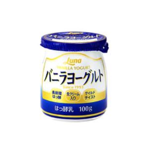 ヨーグルト はっ酵乳 定番から日本未入荷 ロングセラー バニラヨーグルト100g 24個 ルナ ふるさと割