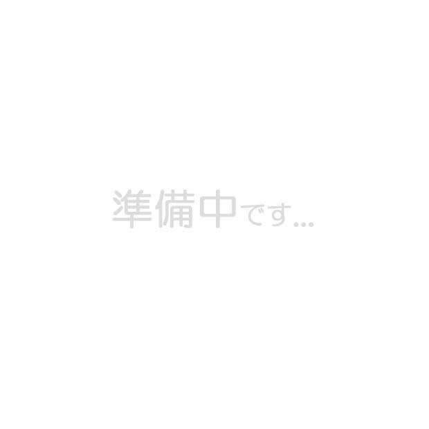 介護雑貨・生活支援用品 回診車 ロングタイプ ナーシングカート 【日進医療器】 【TY416-3】 【送料無料】