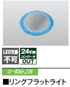 タカショーエクステリア 地中埋込型ライト(フロストタイプ) リングフラットライト(ローボルト) HCD-B16S(シルバー) 青 (旧HCD-B01S)