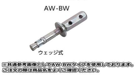 サンコーテクノ トルコンアンカー SAW-BWタイプ SAW-3050BW(50本入り) ステンレス製