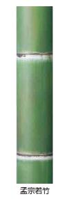 タカショーエクステリア アル銘竹 孟宗若竹(装飾用) 90φ・4m【※メーカー直送品のため代金引換便はご利用できません】