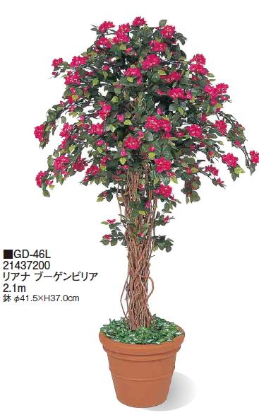 タカショーエクステリア リアナ ブーゲンビリア 鉢付 2.1m GD-46L【※代金引換便はご利用できません】