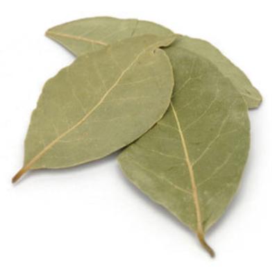 QAI認証 2020新作 ベイリーフ 100g Bay 流行のアイテム アリサン leaf