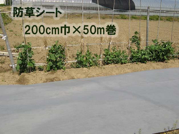 防草シートE110G グレーポリエステル不織布200cm巾×50M巻