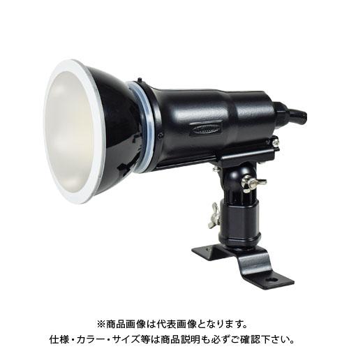 日動工業 常設用 LEDエコビック投光器 14W アース付 白昼色 1.5m 本体色黒 TOL-E14-BK-50K