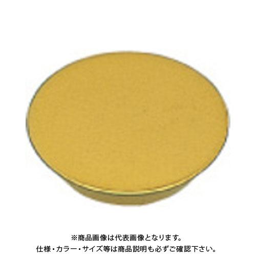 三菱 チップ COAT 10個 RGEN2004M0SN:F7030