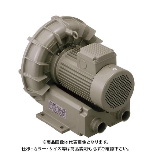 【直送品】テラル リングブロワVFZ―A型 VFZ401A