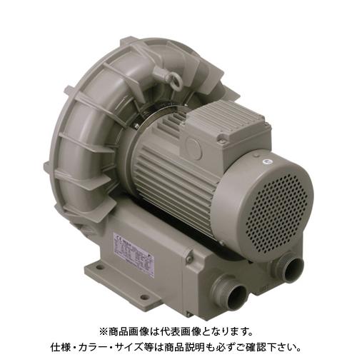【直送品】テラル リングブロワVFZ-A型 VFZ601A