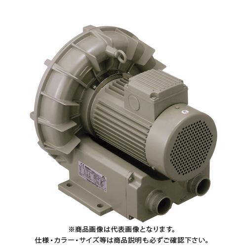 【直送品】テラル リングブロワVFZ-Aーe型 VFZ401A-E