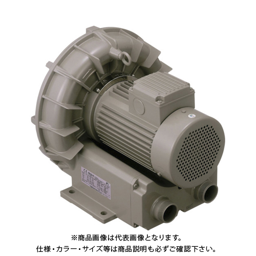 【直送品】テラル リングブロワVFZ-Aーe型 VFZ501A-E