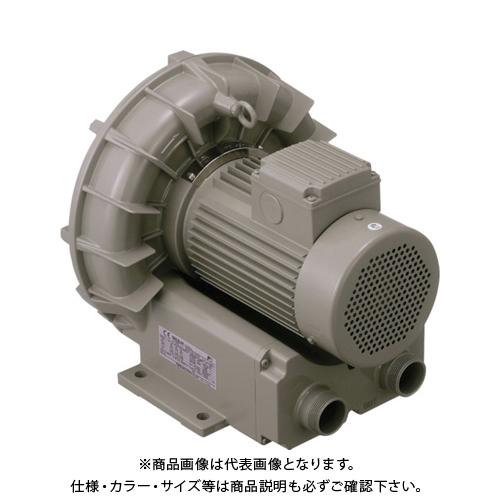 【直送品】テラル リングブロワVFZ-Aーe型 VFZ801A-E