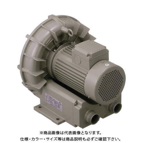 【直送品】テラル リングブロワVFZ-Aーe型 VFZ9015A-E-50HZ