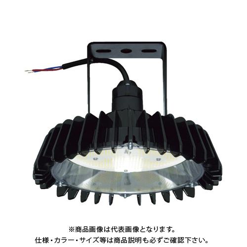 日立 高天井用LEDランプ アームタイプ 特殊環境対応 防湿・防雨形(耐衝撃形) WCBME21AMNC1