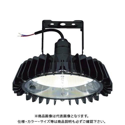 日立 高天井用LEDランプ アームタイプ 特殊環境 屋外形(塩害対応) RBME21AMNC1
