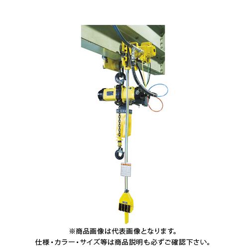 【運賃見積り】【直送品】ENDO エアーホイスト EHL-049TS MTH-1T-5 PCS-41