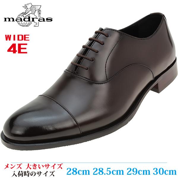 【ビジネスシューズ 30cm メンズ 大きいサイズ】 MADRAS ラウンドトゥ ストレートチップ 日本製 革靴 幅広(マドラス MAK182) DARK BROWN (ダークブラウン)