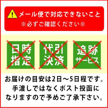 水素吸入用 カニューラ(ダブル水素ボトル) 【メール便・代引き不可】