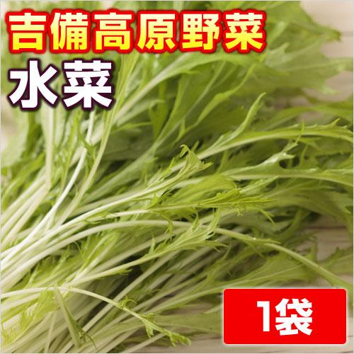 吉備高原の安全 ファッション通販 安心 美味しい野菜 岡山県産 出色 水菜