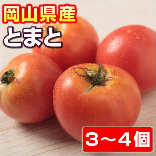吉備高原の安全、安心、美味しい野菜 【岡山県産】 とまと 【トマト】