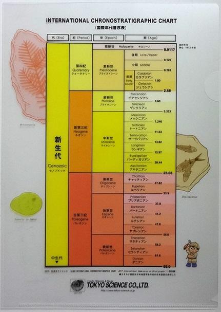 楽天市場】東京サイエンス 地質年代表クリアファイル【新生代 ...