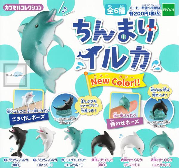 端正地海豚NewColor!! ★全6种安排