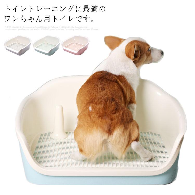 しつけ の 子犬 トイレ 犬のトイレをしつけするときの2つのポイント