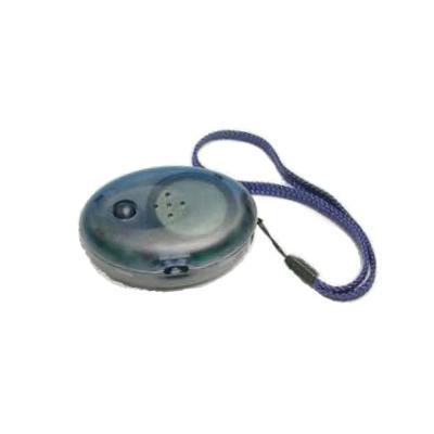 音声方位磁石 C2コンパス