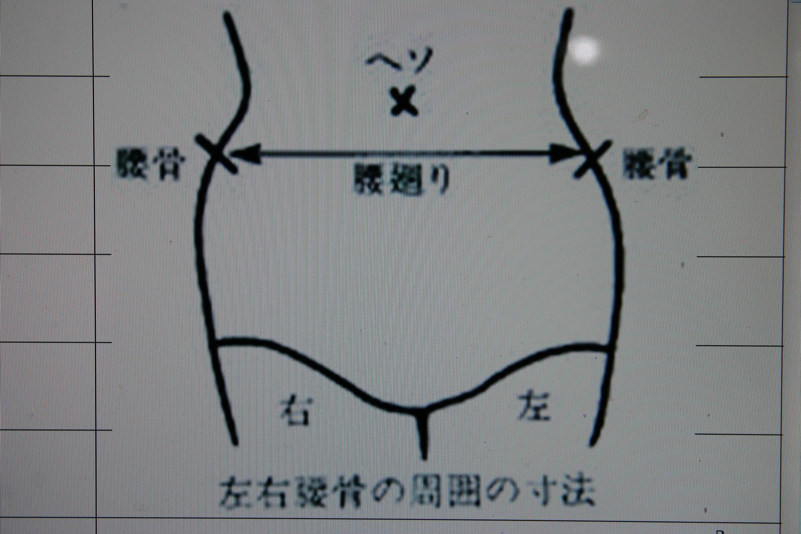 スチール 脱腸帯 7号左(腰周り76~88cm)