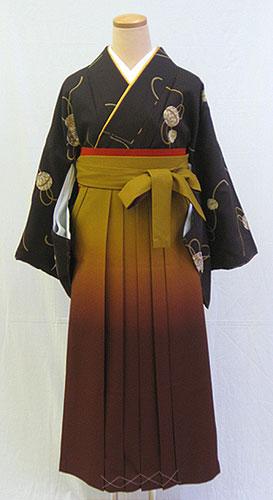 【レンタル 送料無料】 小紋・袴フルセット  「焦茶地にシックな鞠」  ~思い出に残る卒業式に~