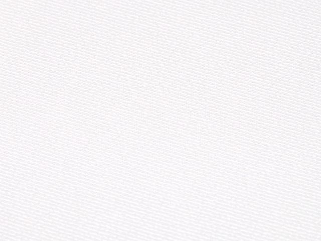 【メール便可】【日本製】洗える正絹半衿 生地 <並の厚さ> 白色 無地 半襟 塩瀬織り 黒留袖・色留袖・振袖・訪問着・附下・色無地・喪服・小紋・紬などあらゆる着物に着けていただけます。