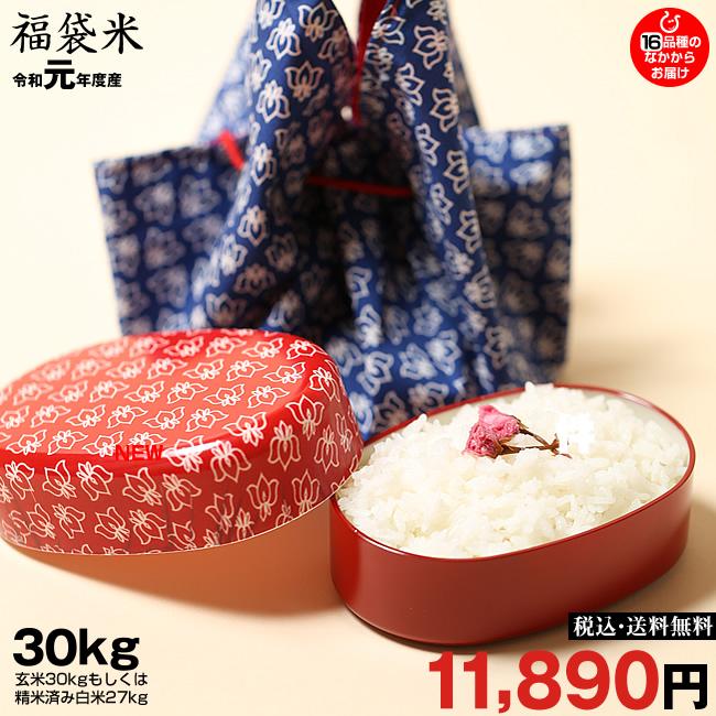 新米!【令和元年:滋賀県産】【福袋30】玄米のまま30kgもしくは精米済み白米27kg【送料無料】1袋でのお届けとなります!